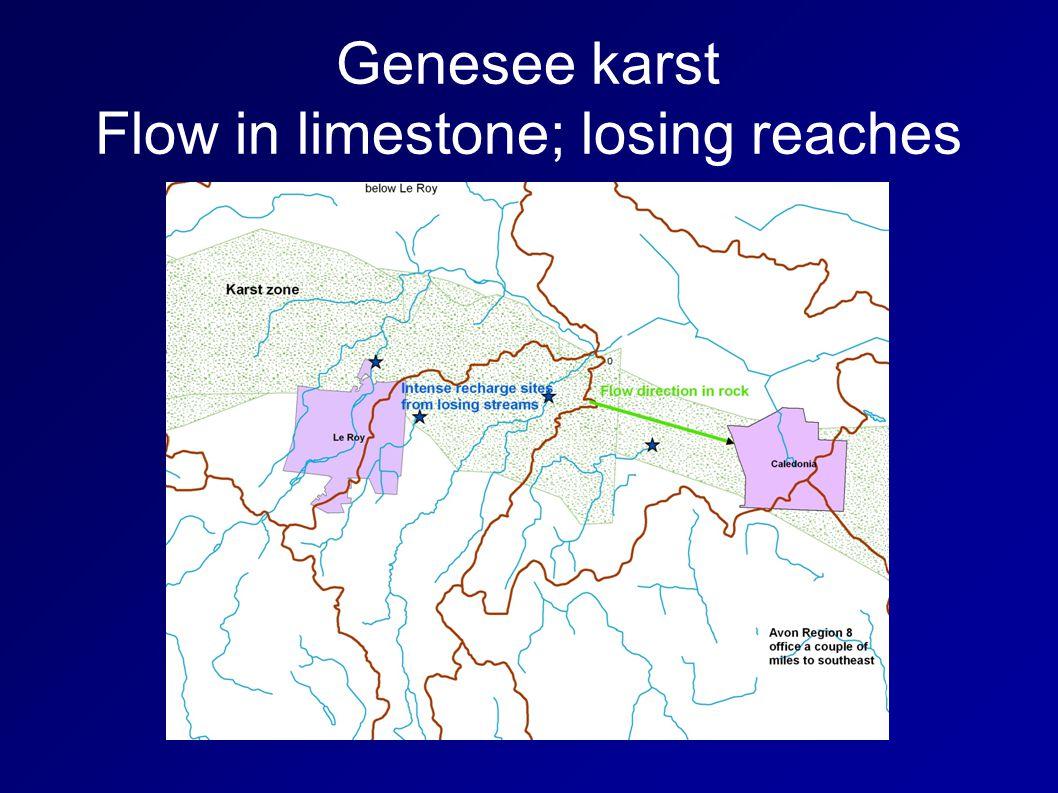 Genesee karst Flow in limestone; losing reaches