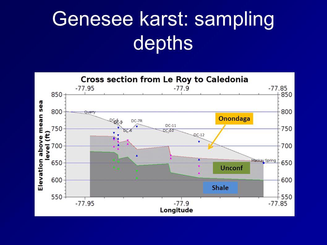 Genesee karst: sampling depths Onondaga Shale Unconf