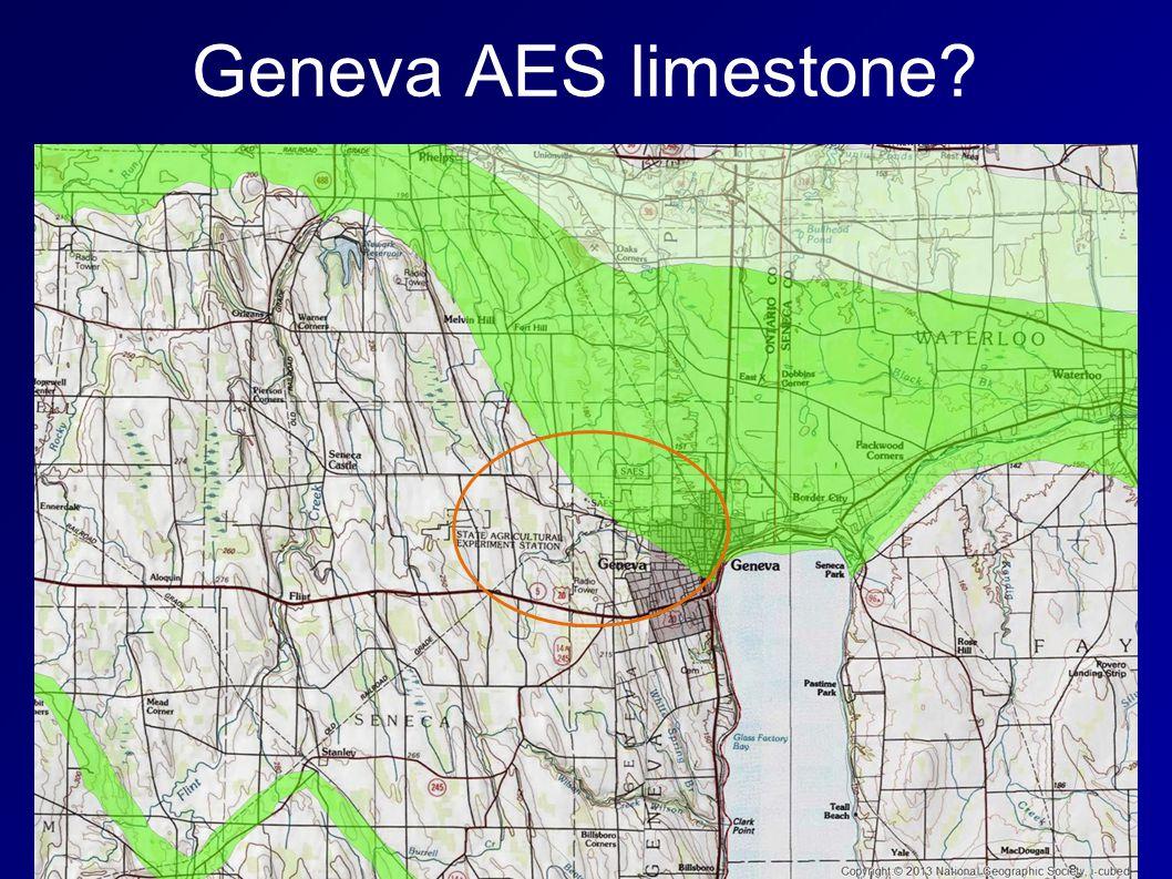 Geneva AES limestone?