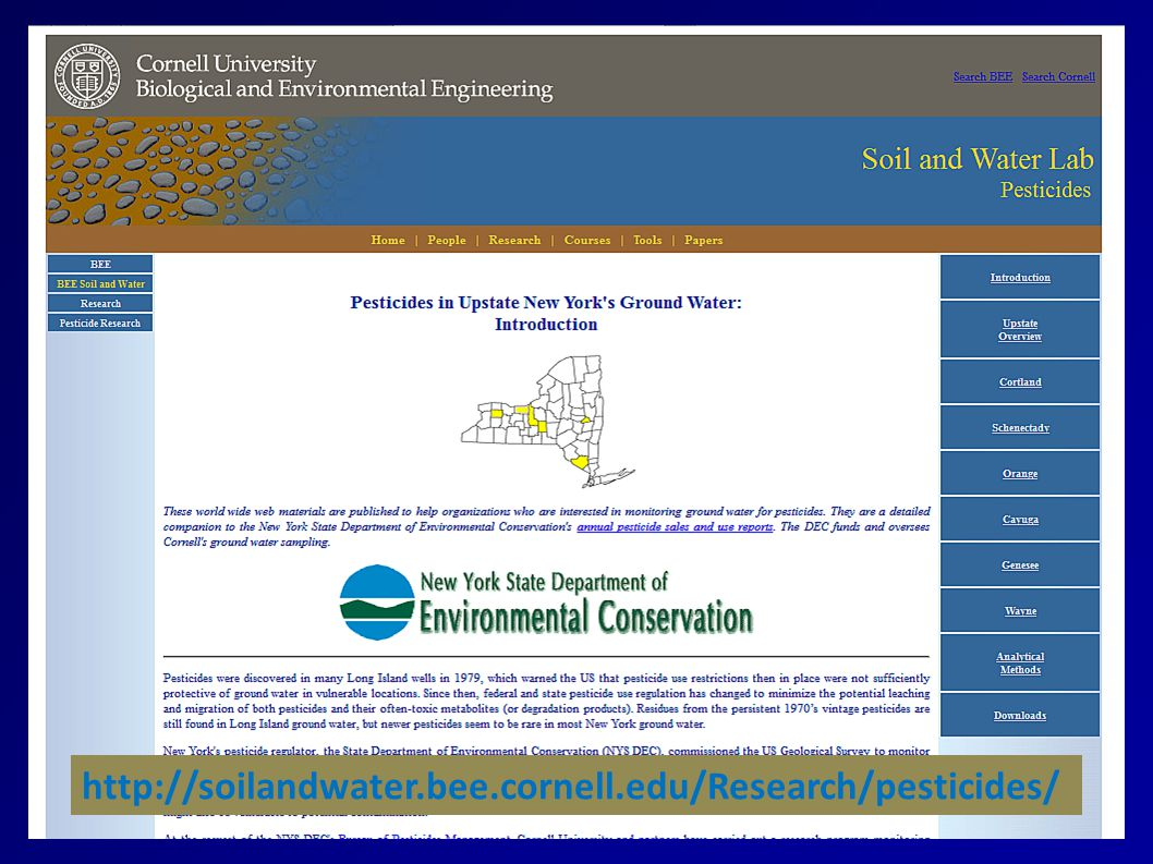 http://soilandwater.bee.cornell.edu/Research/pesticides/