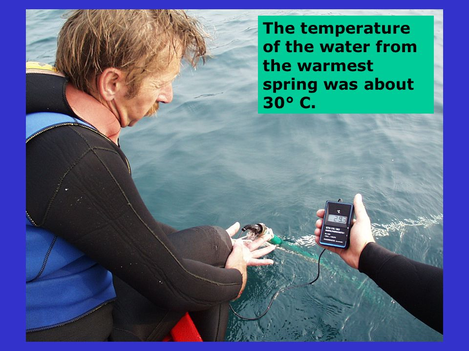 The temperature of the water from the warmest spring was about 30° C.