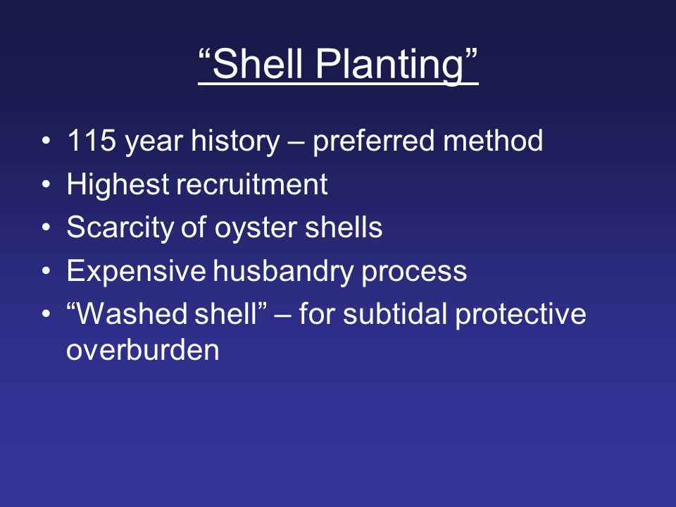 """Shell Planting"" 115 year history – preferred method Highest recruitment Scarcity of oyster shells Expensive husbandry process ""Washed shell"" – for su"
