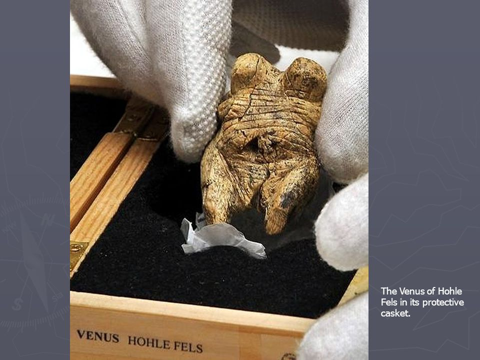 The Venus of Hohle Fels in its protective casket.