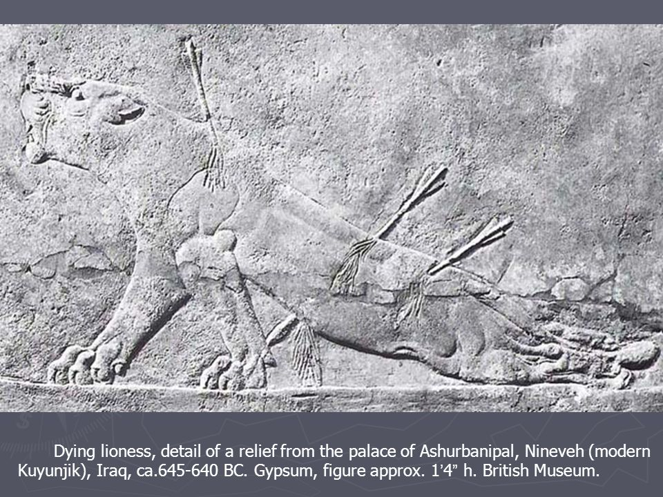 Dying lioness, detail of a relief from the palace of Ashurbanipal, Nineveh (modern Kuyunjik), Iraq, ca.645-640 BC.