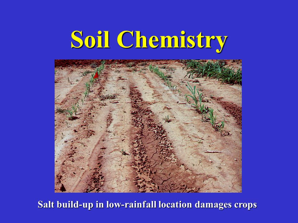 Soil Chemistry Salt build-up in low-rainfall location damages crops