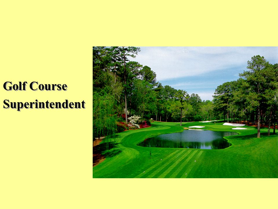 Golf Course Superintendent Golf Course Superintendent
