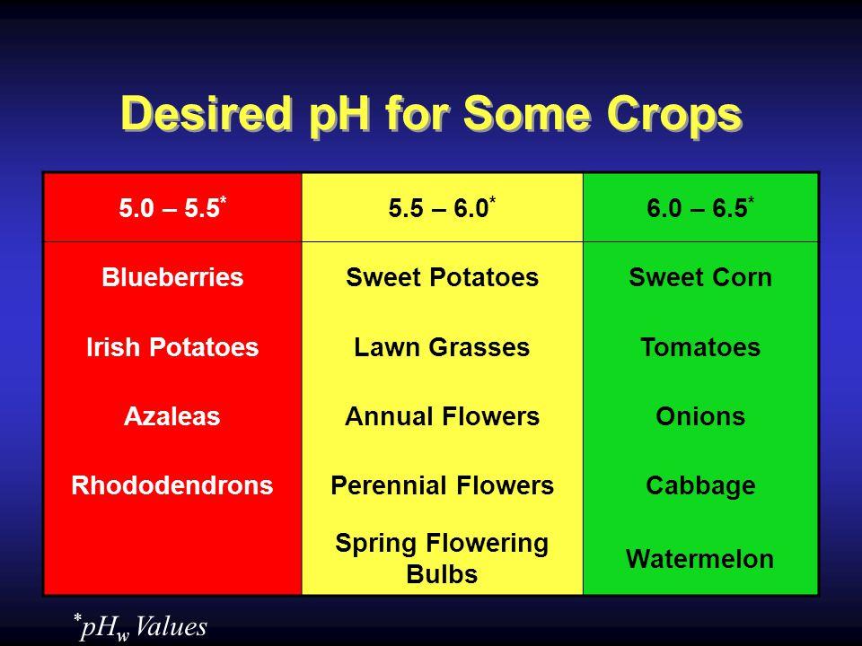 Desired pH for Some Crops 5.0 – 5.5 * 5.5 – 6.0 * 6.0 – 6.5 * BlueberriesSweet PotatoesSweet Corn Irish PotatoesLawn GrassesTomatoes AzaleasAnnual FlowersOnions RhododendronsPerennial FlowersCabbage Spring Flowering Bulbs Watermelon * pH w Values