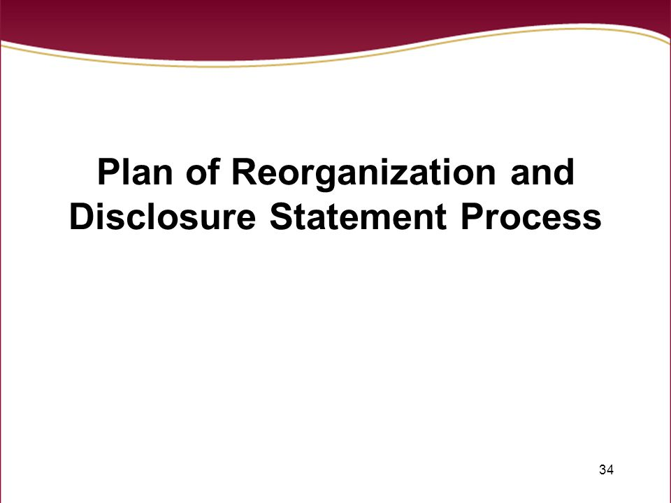 34 Plan of Reorganization and Disclosure Statement Process