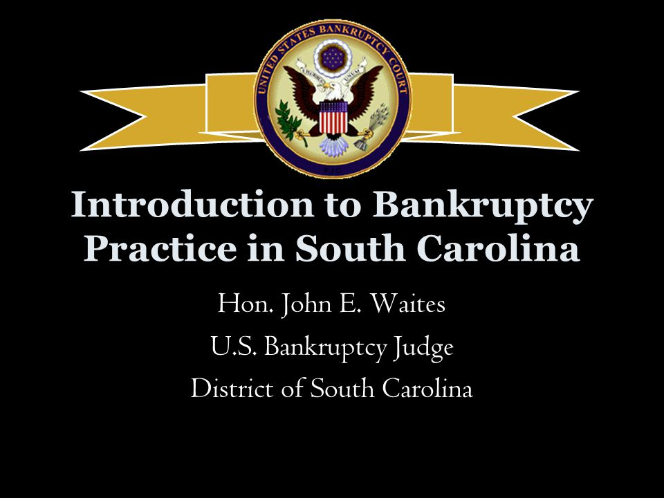 Introduction to Bankruptcy Practice in South Carolina Hon.