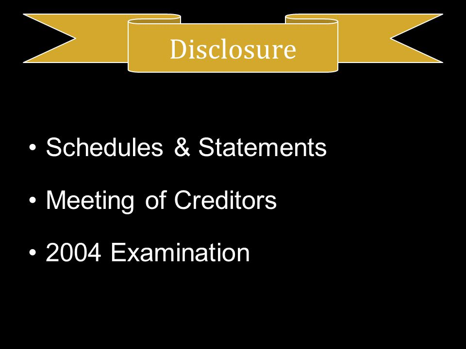 Schedules & Statements Meeting of Creditors 2004 Examination Disclosure