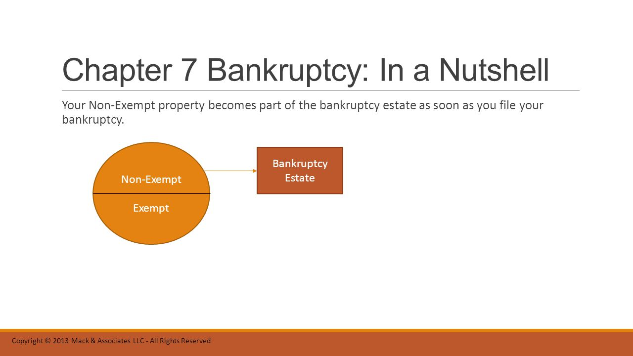 Chapter 7 Bankruptcy: In a Nutshell When you file your bankruptcy, there is a Bankruptcy Trustee who is assigned to your case.
