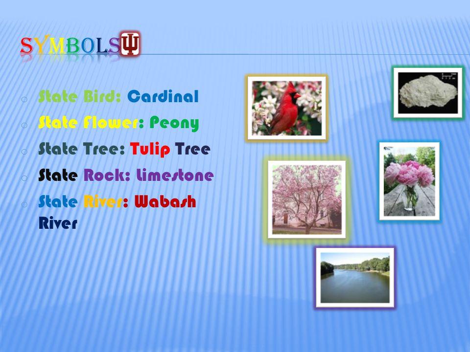 o State Bird: Cardinal o State Flower: Peony o State Tree: Tulip Tree o State Rock: Limestone o State River: Wabash River