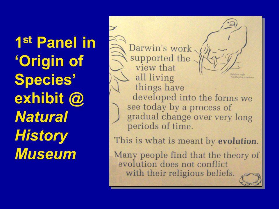 1 st Panel in 'Origin of Species' exhibit @ Natural History Museum