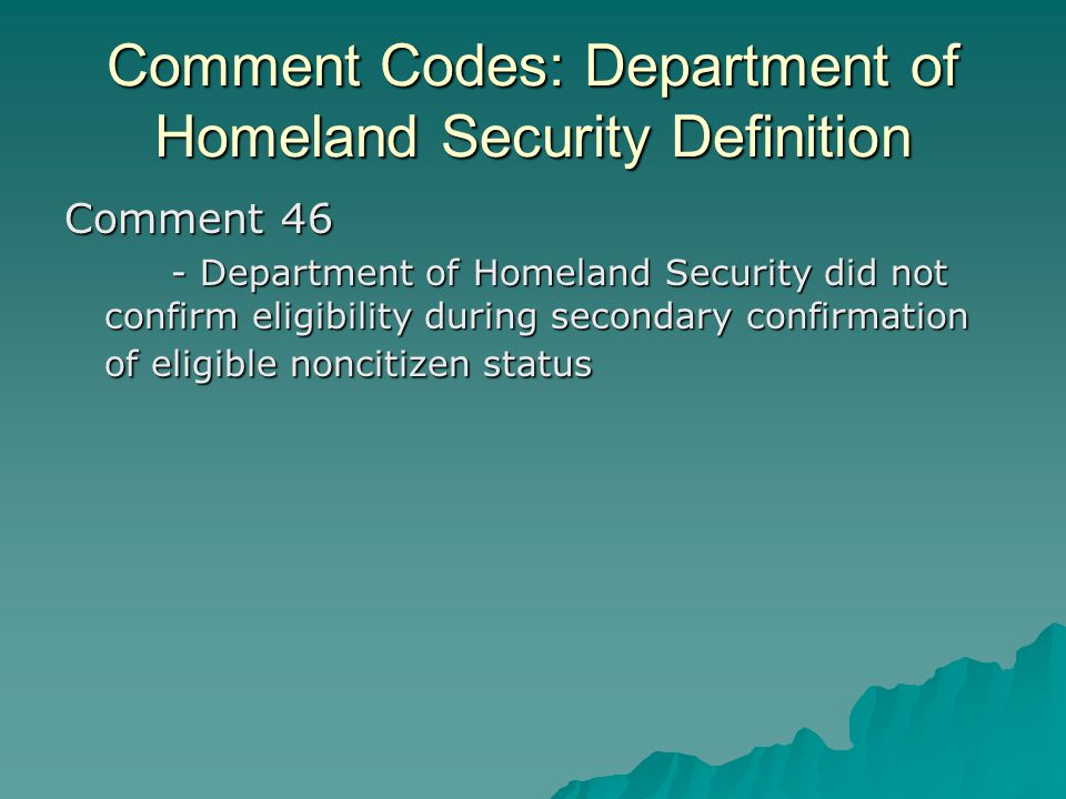 Comment Codes: Department of Homeland Security Definition Comment 46 - Department of Homeland Security did not confirm eligibility during secondary co