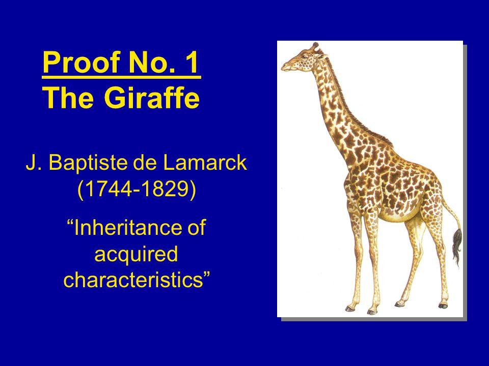 Proof No. 1 The Giraffe J.