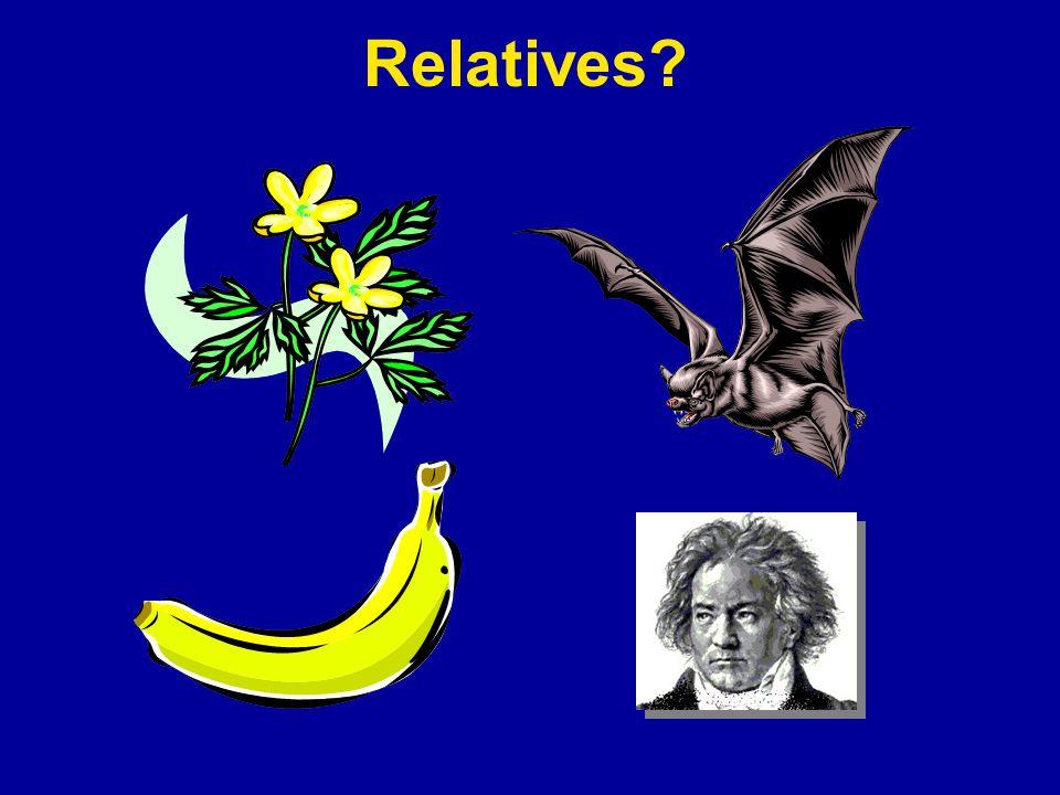 Relatives?