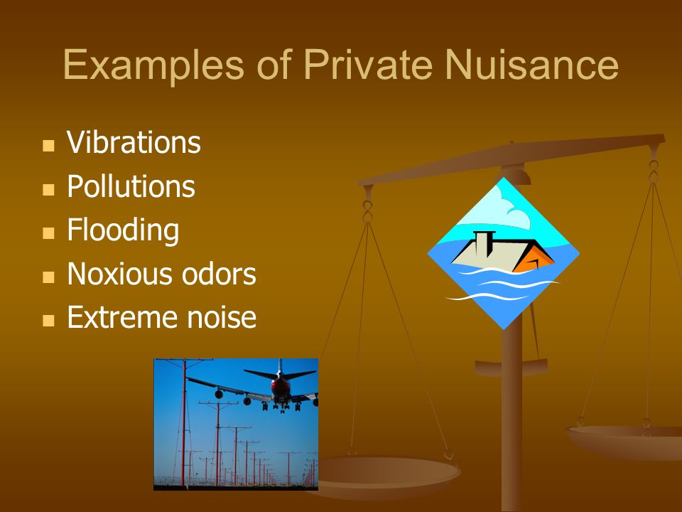 Examples of Private Nuisance Vibrations Pollutions Flooding Noxious odors Extreme noise