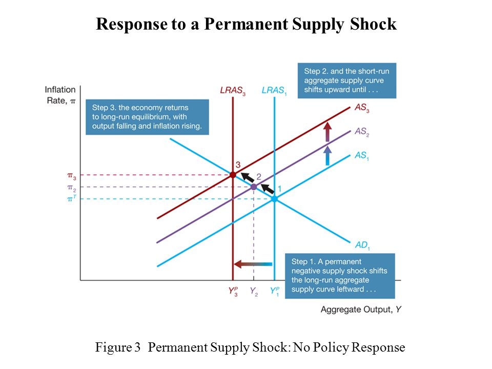 Figure 3 Permanent Supply Shock: No Policy Response Response to a Permanent Supply Shock