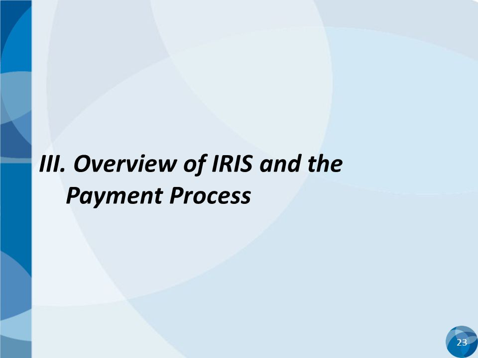 23 III. Overview of IRIS and the Payment Process