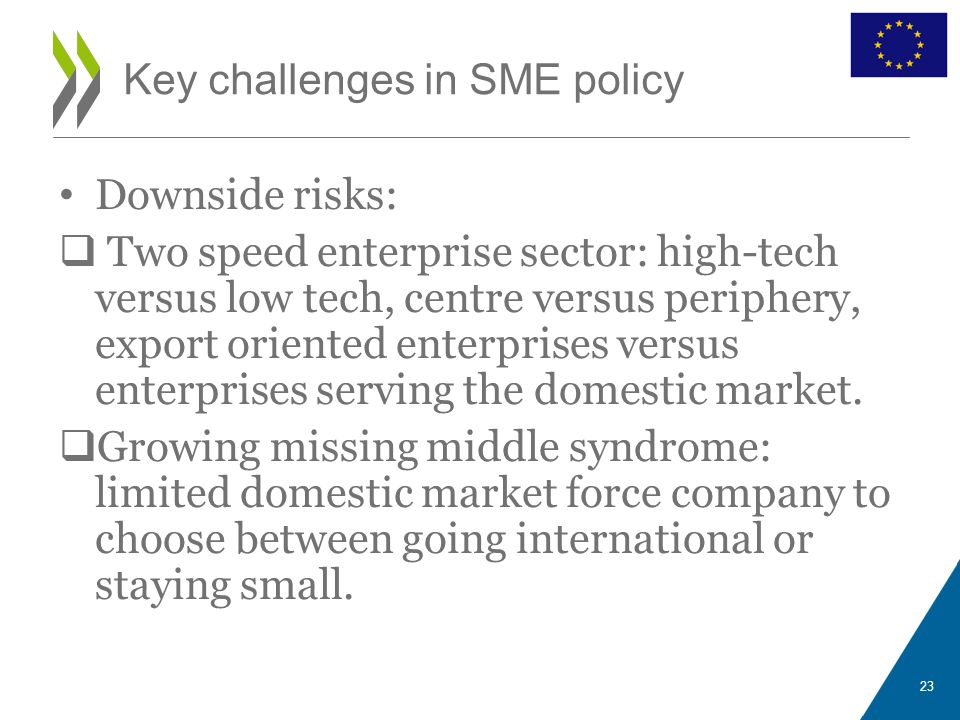 Downside risks:  Two speed enterprise sector: high-tech versus low tech, centre versus periphery, export oriented enterprises versus enterprises serv