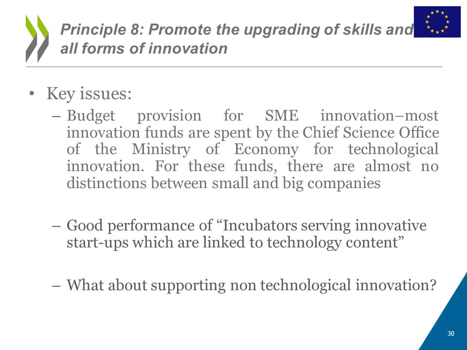 Key issues: – Budget provision for SME innovation–most innovation funds are spent by the Chief Science Office of the Ministry of Economy for technological innovation.