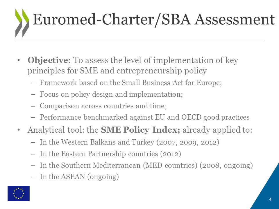 WITH THE FINANCIAL SUPPORT OF THE EUROPEAN UNION Euromed-Charter/SBA Assessment 4 Objective: To assess the level of implementation of key principles f