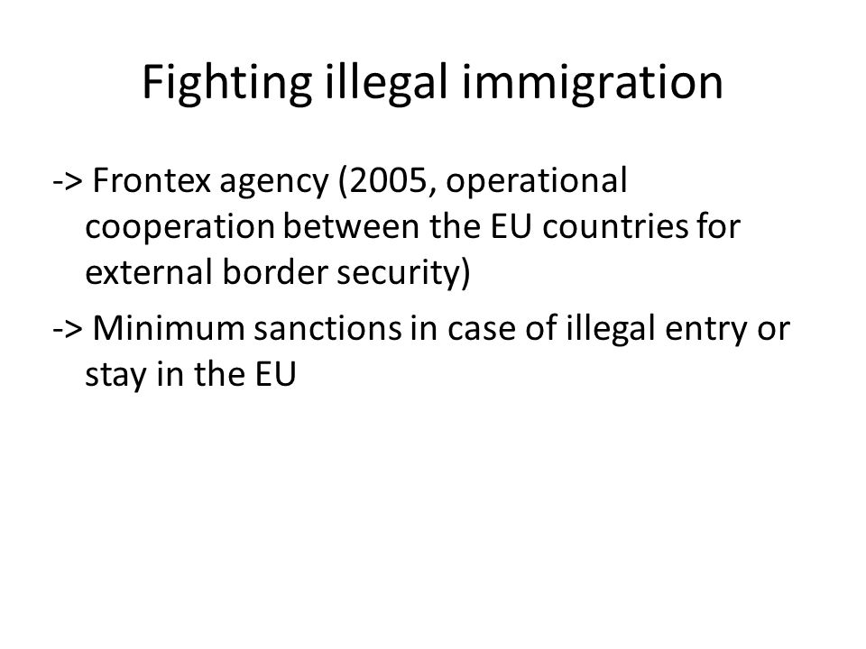 Fighting illegal immigration -> Frontex agency (2005, operational cooperation between the EU countries for external border security) -> Minimum sanctions in case of illegal entry or stay in the EU
