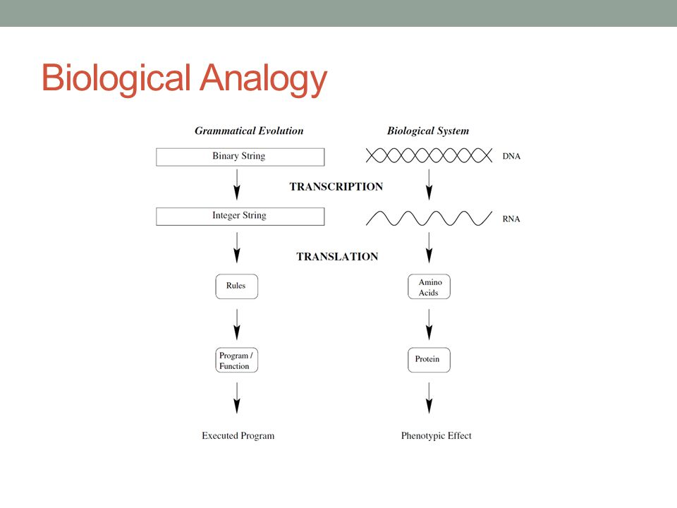 Methodology A sample of 178 (89 failed and 89 non-failed) publicly quoted US firms was drawn from the period 1991 to 2000 in order to train and test the model.
