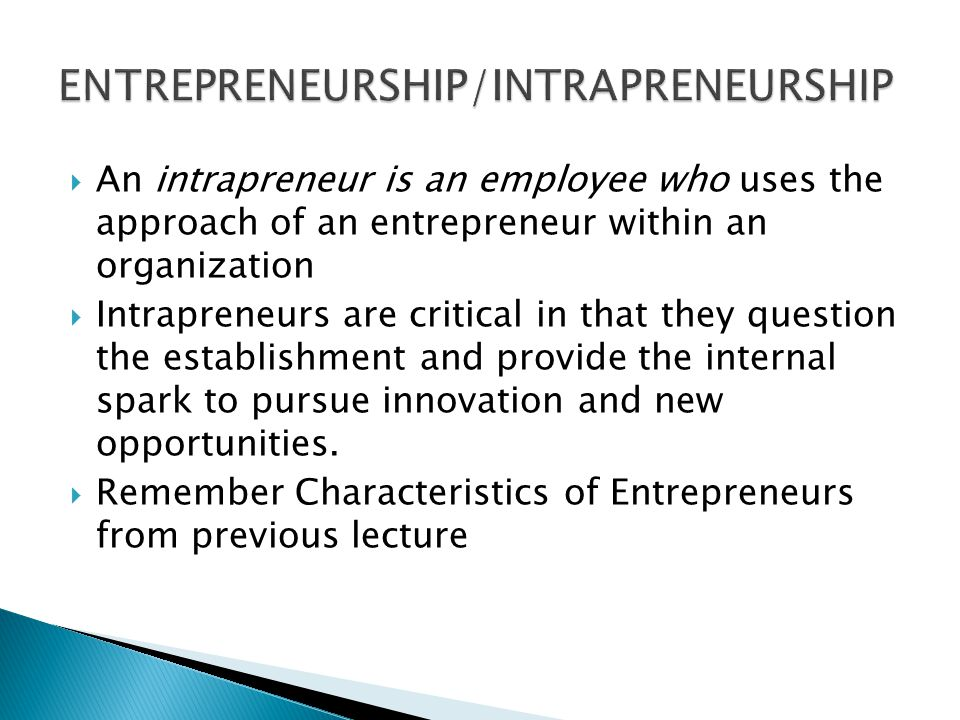  An intrapreneur is an employee who uses the approach of an entrepreneur within an organization  Intrapreneurs are critical in that they question the establishment and provide the internal spark to pursue innovation and new opportunities.