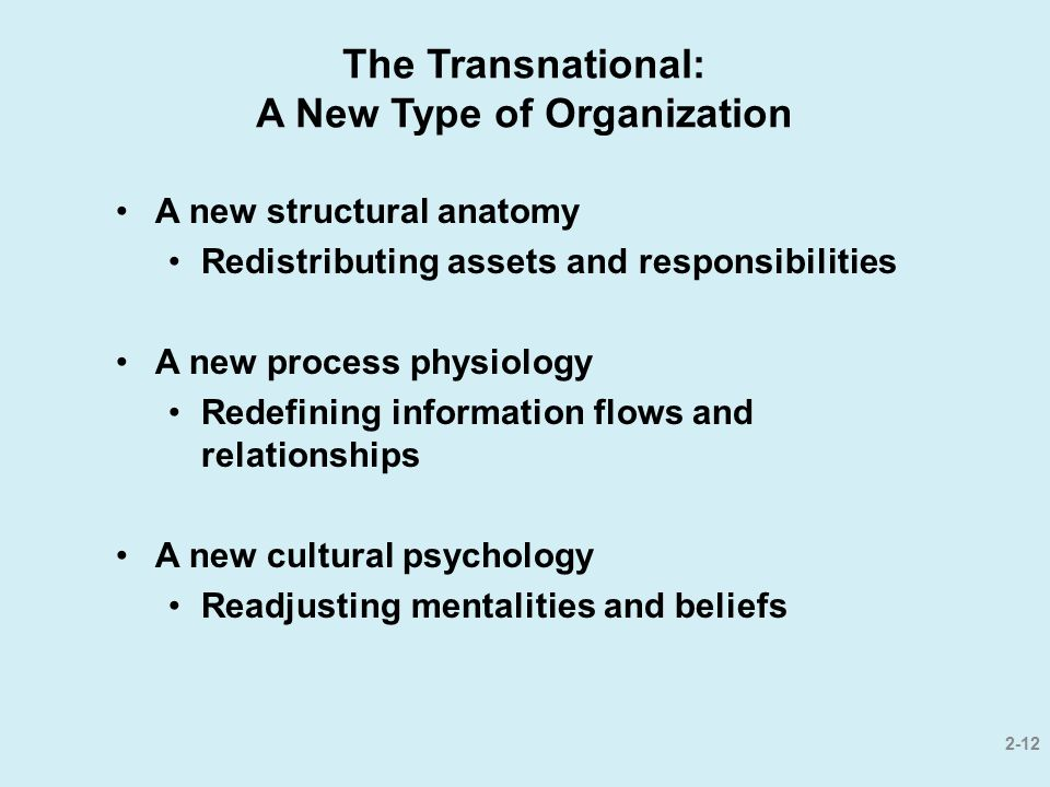 The Transnational: A New Type of Organization A new structural anatomy Redistributing assets and responsibilities A new process physiology Redefining
