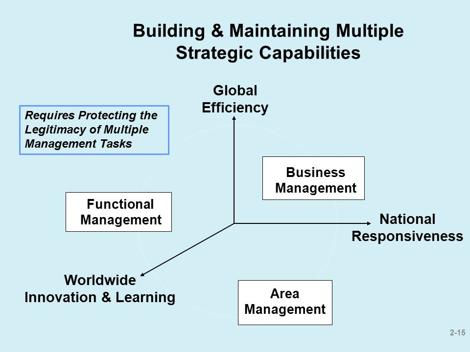 2-15 Building & Maintaining Multiple Strategic Capabilities Business Management Area Management Functional Management Worldwide Innovation & Learning