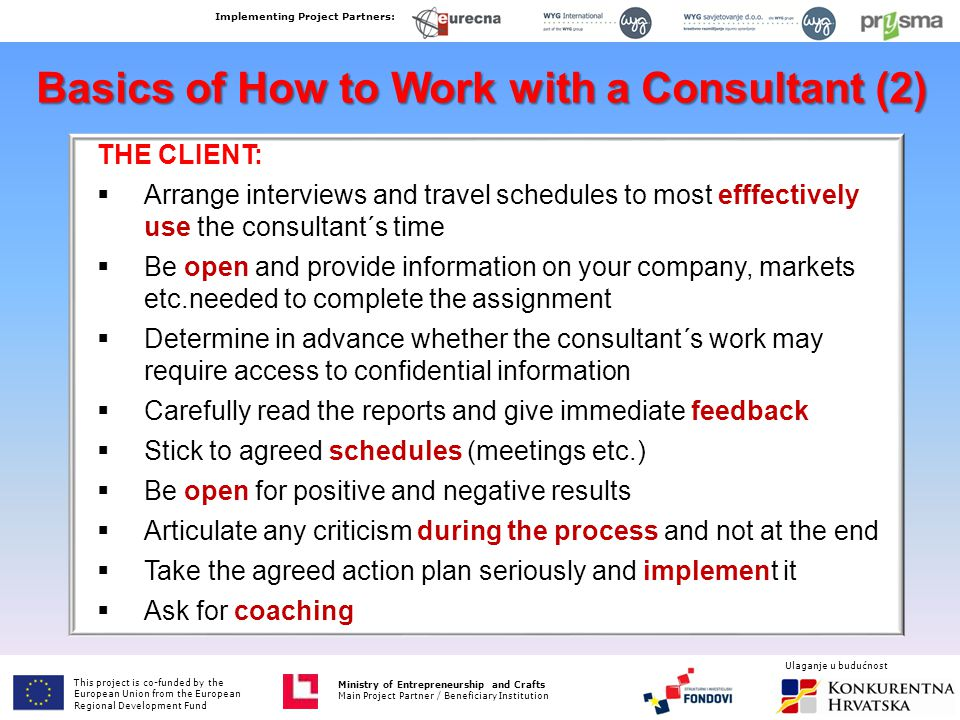 Basics of How to Work with a Consultant (2) THE CLIENT:  Arrange interviews and travel schedules to most efffectively use the consultant´s time  Be