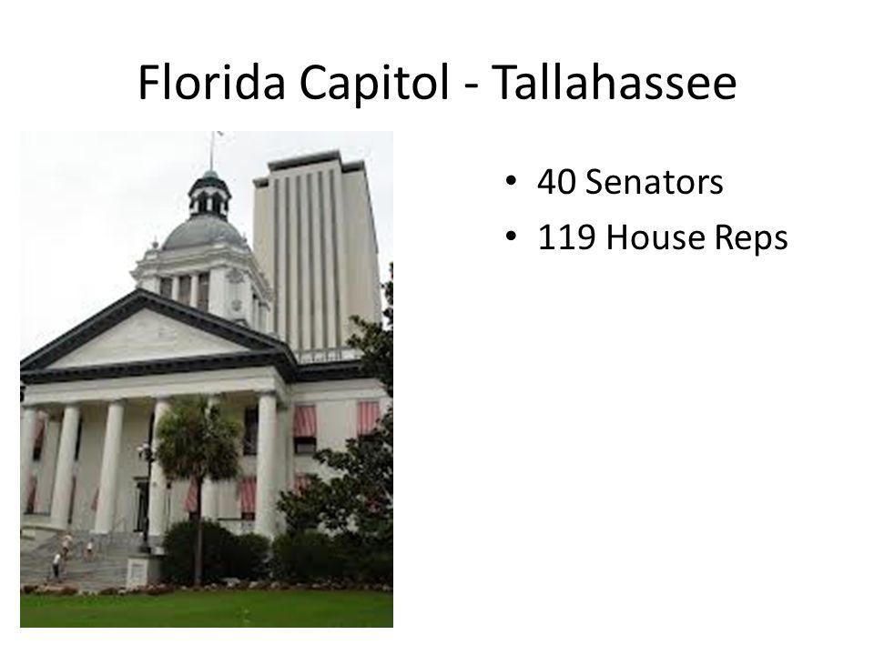 Florida Capitol - Tallahassee 40 Senators 119 House Reps