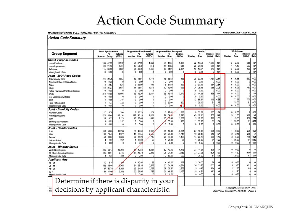 Copyright © 2013 MARQUIS Action Code Summary Determine if there is disparity in your decisions by applicant characteristic.