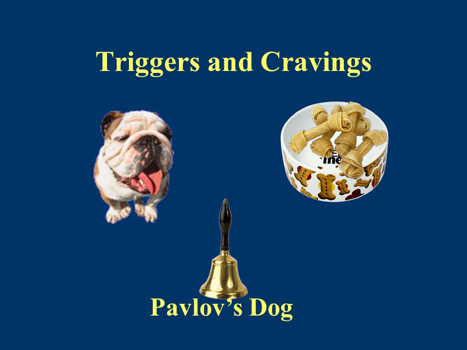 Triggers and Cravings Pavlov's Dog