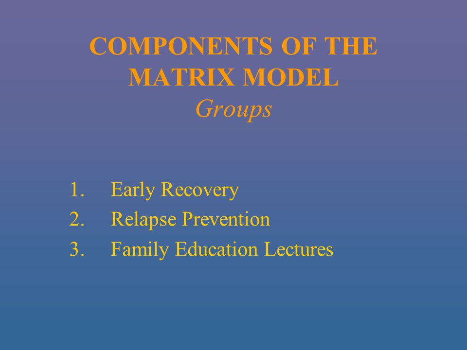 COMPONENTS OF THE MATRIX MODEL Groups 1.Early Recovery 2.