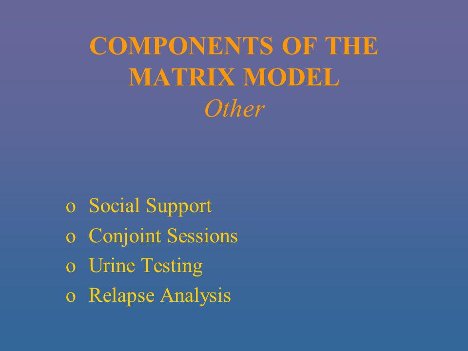 COMPONENTS OF THE MATRIX MODEL Other o Social Support o Conjoint Sessions o Urine Testing o Relapse Analysis