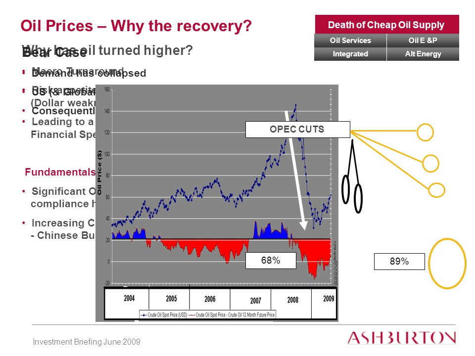 Investment Briefing June 2009 Why has oil turned higher.