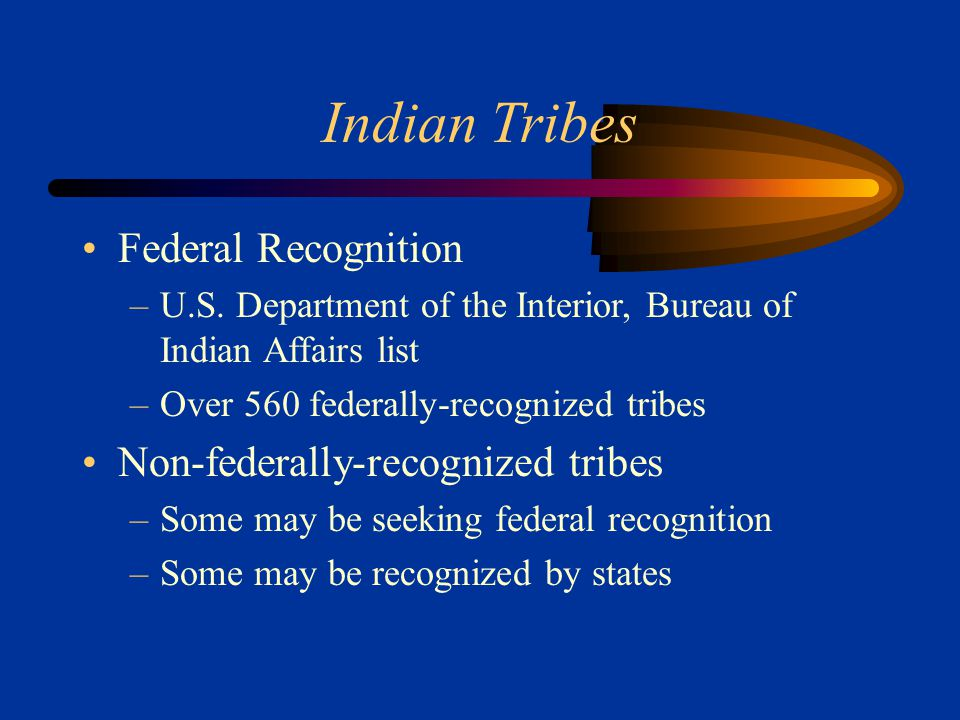 Tribal Programs Statutes Authorizing EPA Approval of Tribal Programs –Explicit – CAA, CWA, SDWA –Implicit – TSCA, EPCRKA –Backcountry Against Dumps RCRA Case Statutes Providing a Special Role for Tribes – CERCLA, FIFRA Statutes Authorizing Funding for Tribal Programs – IEGAPA, Media-specific