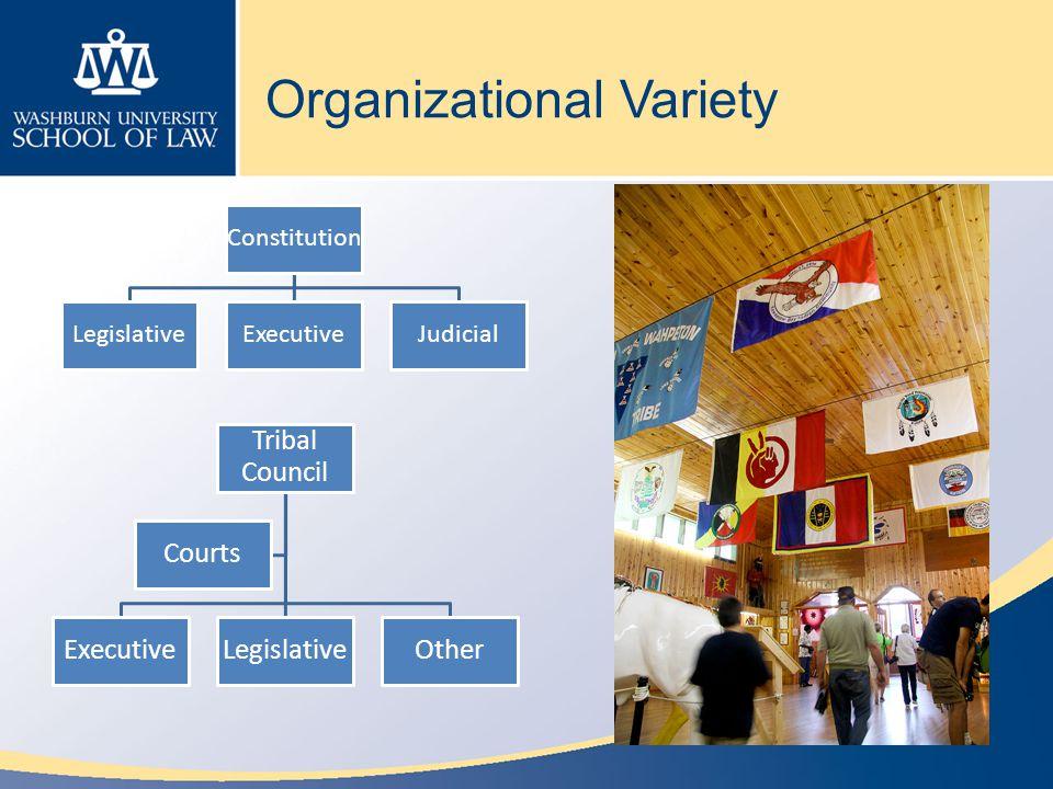 Organizational Variety Tribal Council ExecutiveLegislativeOther Courts Constitution LegislativeExecutiveJudicial