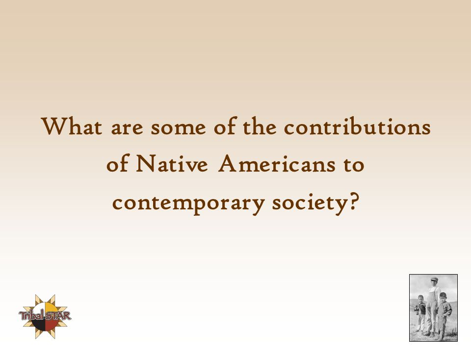 What are some of the contributions of Native Americans to contemporary society?