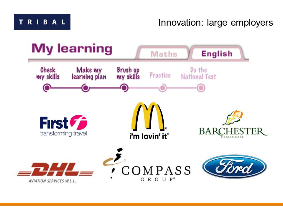Innovation: large employers