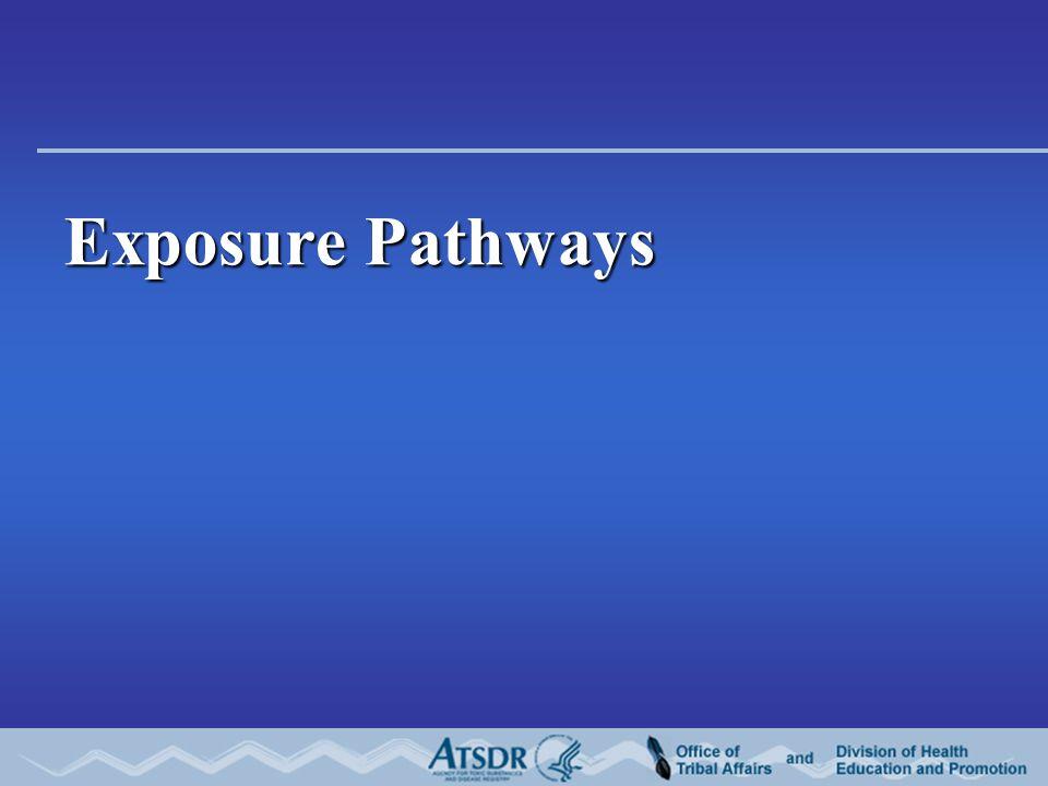 Exposure Pathways