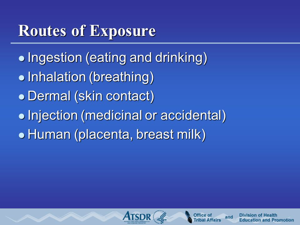 Routes of Exposure Ingestion (eating and drinking) Ingestion (eating and drinking) Inhalation (breathing) Inhalation (breathing) Dermal (skin contact) Dermal (skin contact) Injection (medicinal or accidental) Injection (medicinal or accidental) Human (placenta, breast milk) Human (placenta, breast milk)