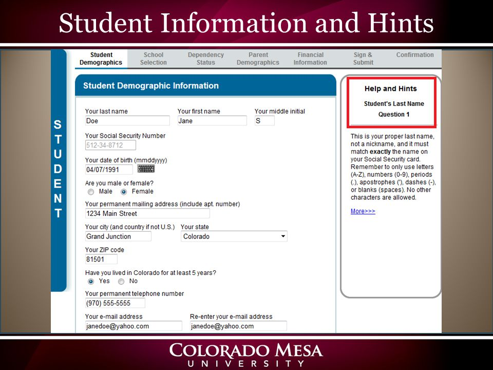 Student Information and Hints