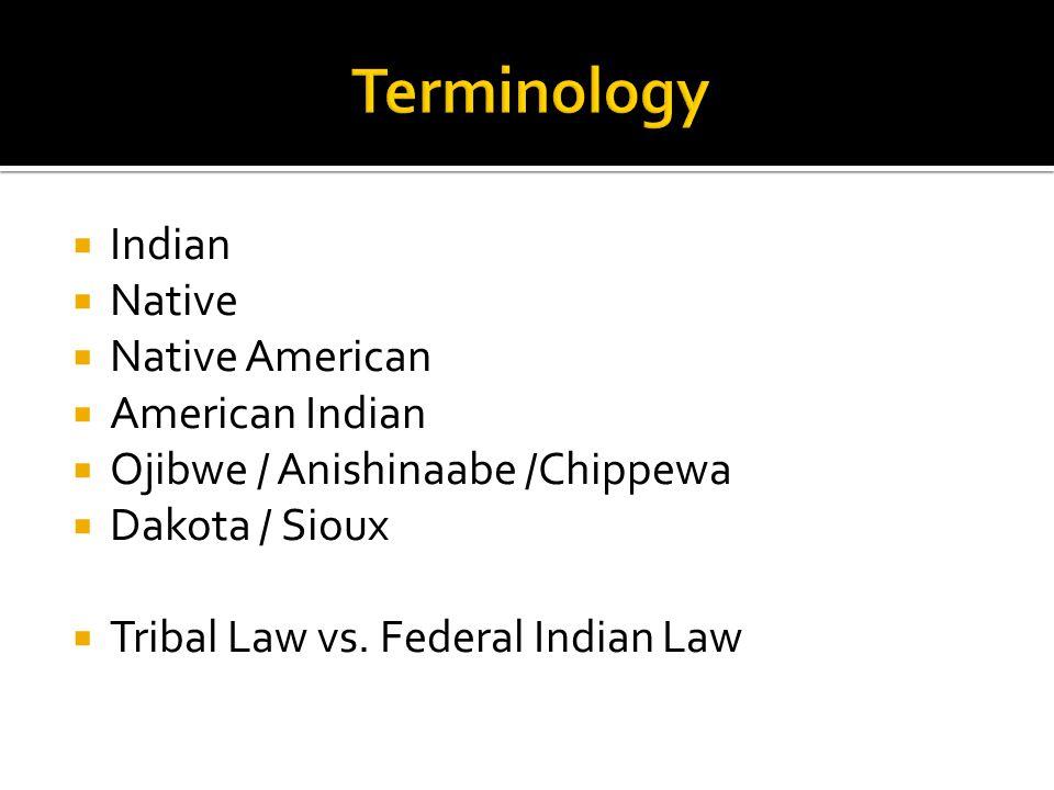  Indian  Native  Native American  American Indian  Ojibwe / Anishinaabe /Chippewa  Dakota / Sioux  Tribal Law vs.