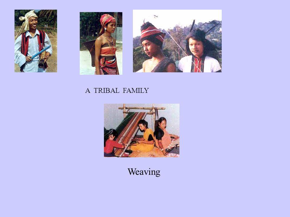 A TRIBAL FAMILY Weaving