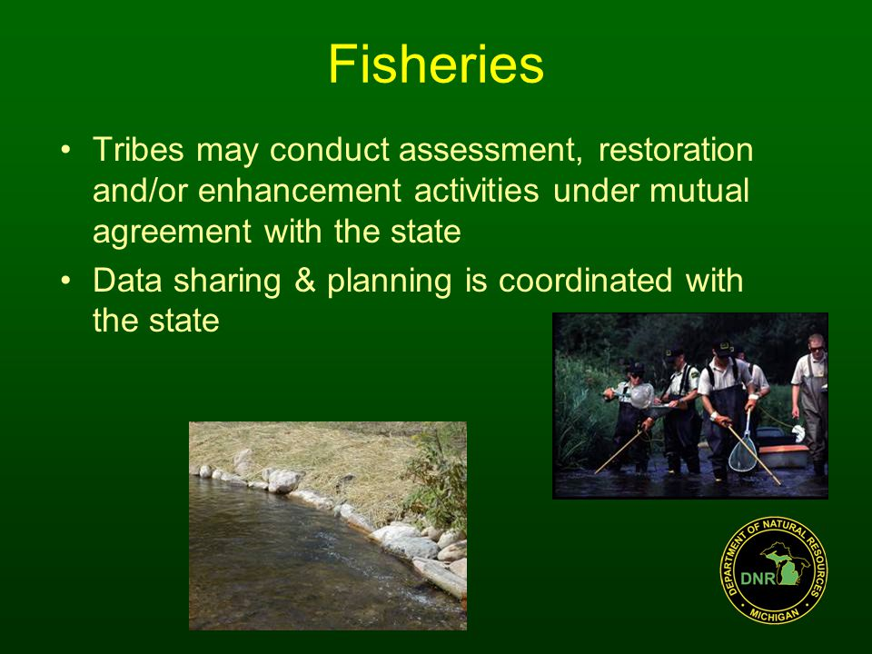 Fisheries Tribes may conduct assessment, restoration and/or enhancement activities under mutual agreement with the state Data sharing & planning is coordinated with the state