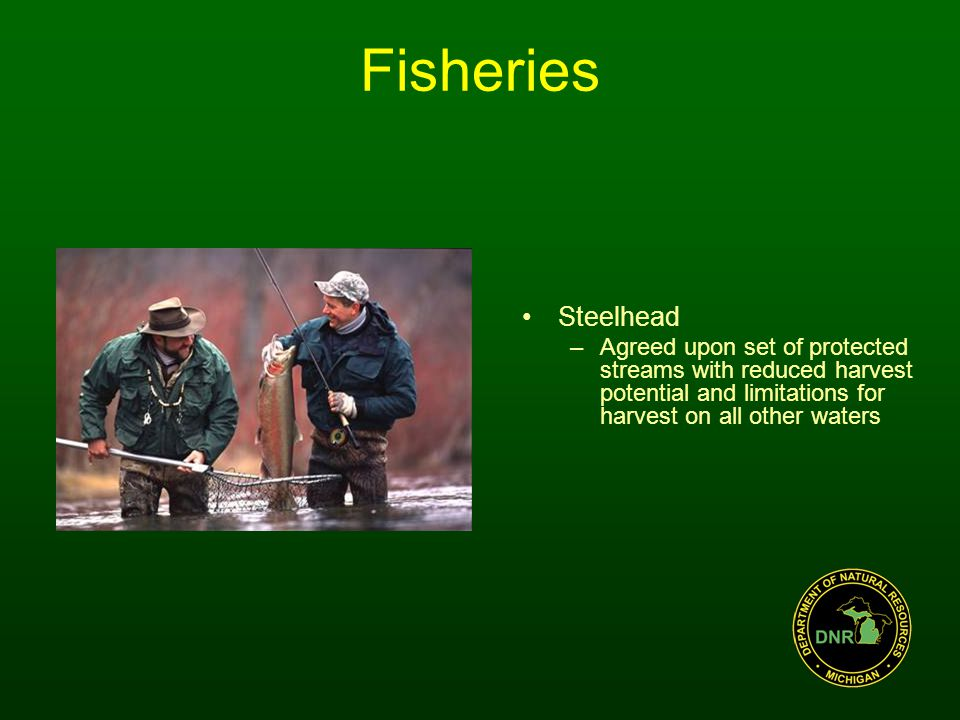 Fisheries Steelhead –Agreed upon set of protected streams with reduced harvest potential and limitations for harvest on all other waters