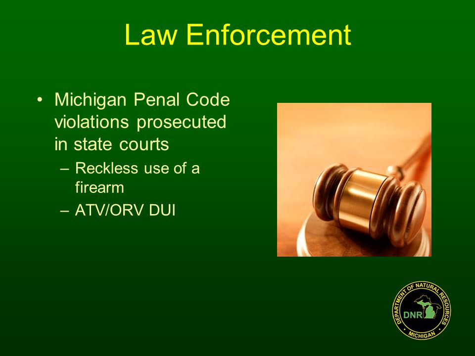 Michigan Penal Code violations prosecuted in state courts –Reckless use of a firearm –ATV/ORV DUI Law Enforcement